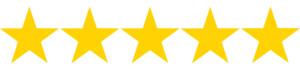 sara barats web design five star review